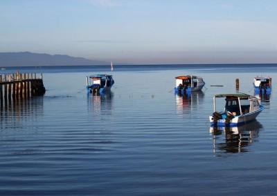 Thalassa Fleet