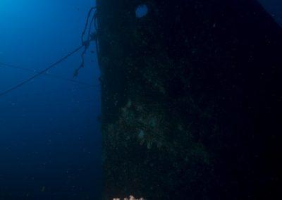 Diving Bali