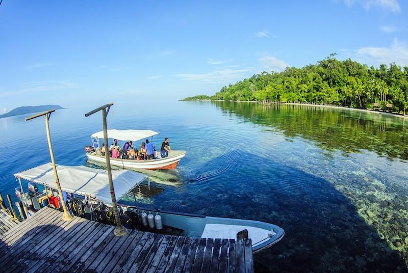Papua explorers dive resort in raja ampat book here - Dive resort raja ampat ...