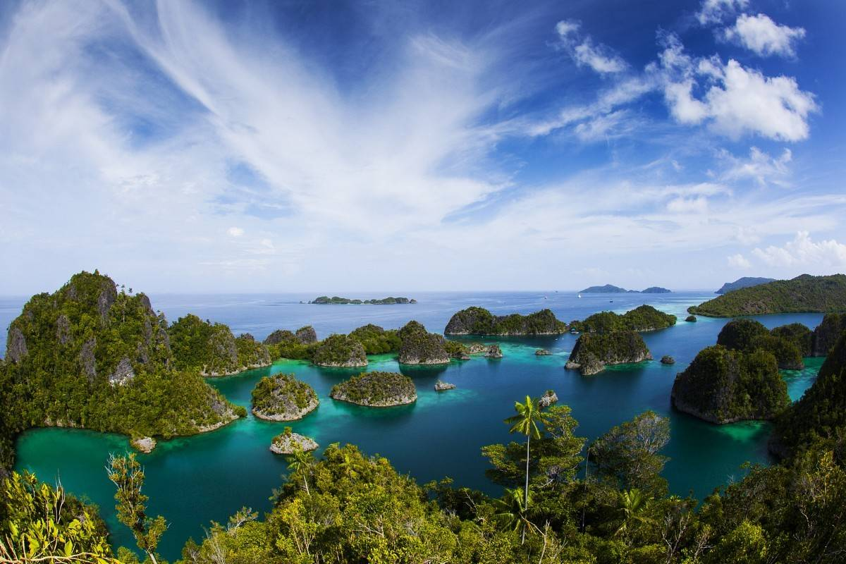 Raja Ampat Biodiversity Eco Resort Manado Safari Tours