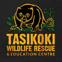 Tasikoki Logo